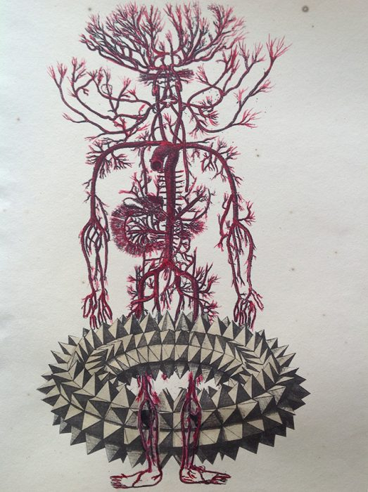 Heteroglossia